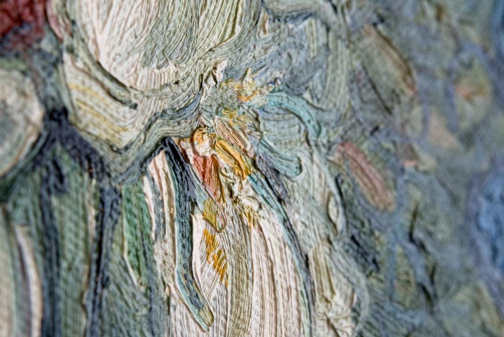 detail Irises