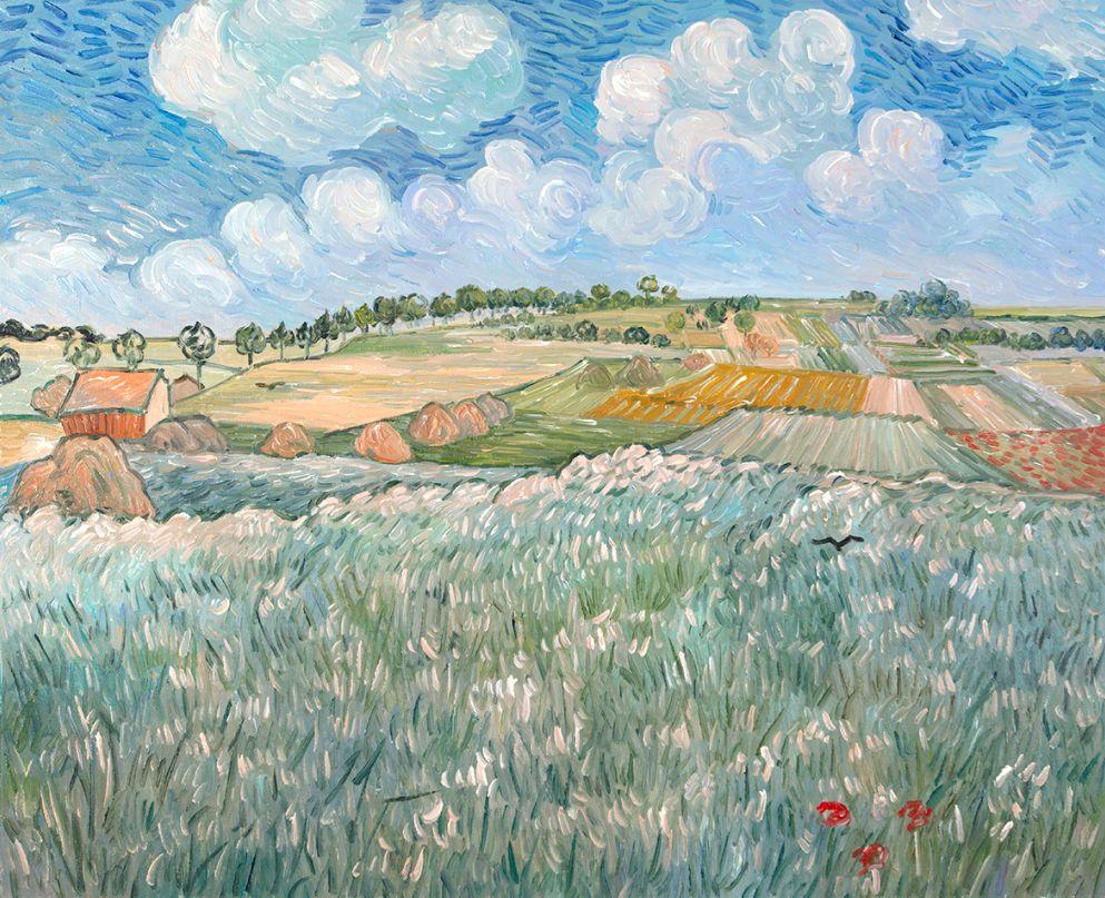 Plain near Auvers Van Gogh reproduction