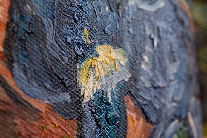 Van Gogh reproduction Irises detail
