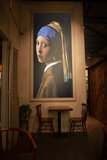 Girl with the Pearl Earring framed