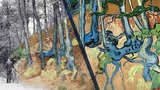 Tree Roots Van Gogh postcard discovery