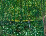 Trees and Undergrowth Van Gogh reproduction