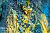 detail The Ravine of the Peyroulets Van Gogh replica