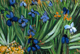 replica detail Field with Irises near Arles reproduction
