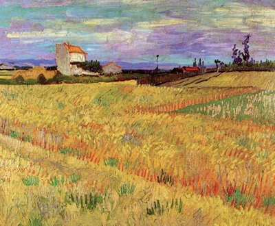 Wheat Field Van Gogh Reproduction, hand-painted in oil on canvas